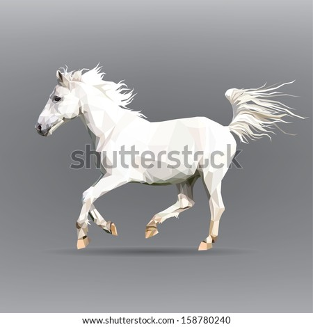 white horse isolated on a gray