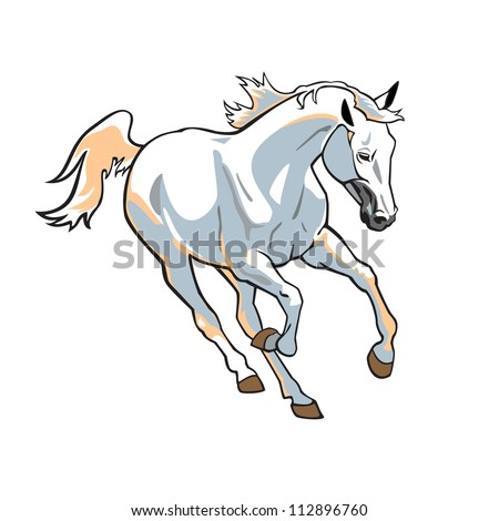 White Horse, Vector Picture Isolated On White Background ...