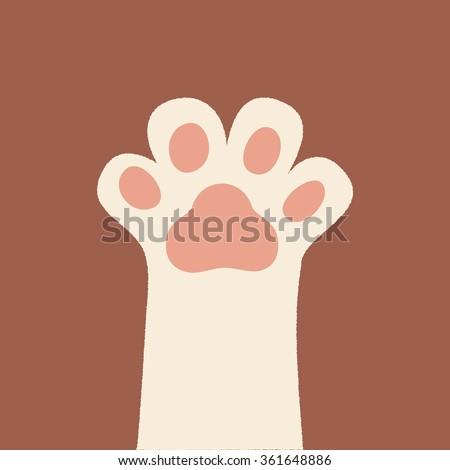 white kitten paw isolated on