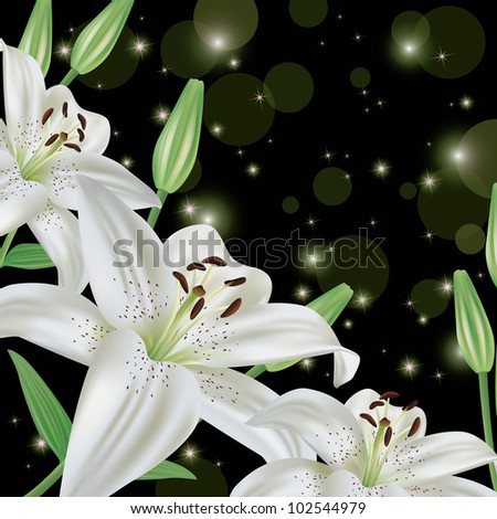 White lily flower glowing background, greeting or invitation card, vector illustration