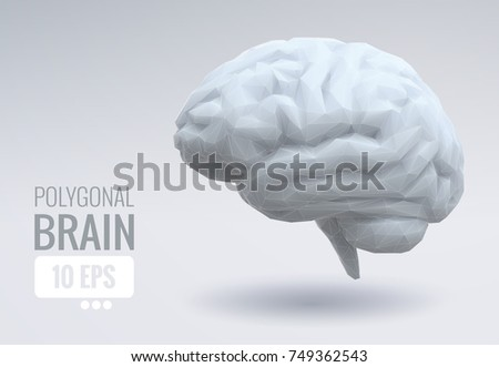 White low poly brain illustration on white space graphic template background