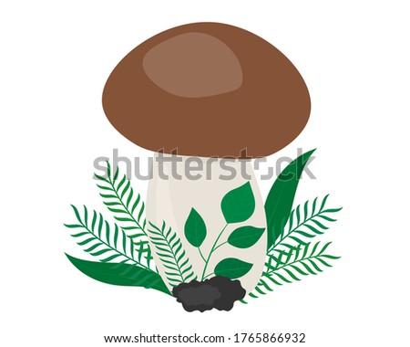 white mushroom with tree leaves