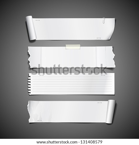 White paper roll ripped design long collections, vector illustration