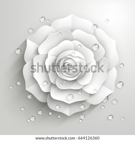white paper rose with drops of