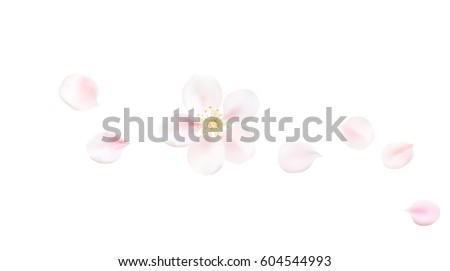 white pastel background with