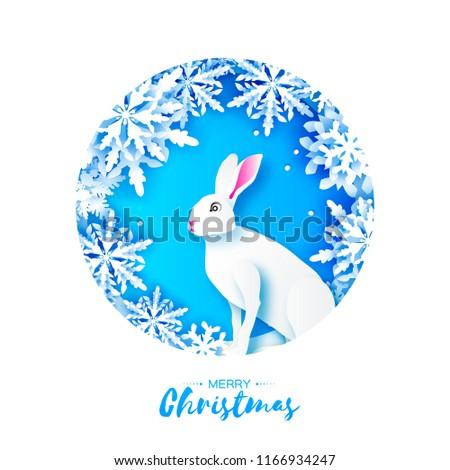 white rabbit in snowy frame