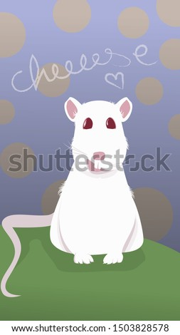white rat with red eyes smiling