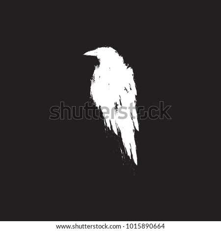 white raven crow bird isolated