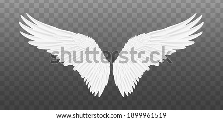 White realistic wings. Pair of white isolated angel style wings with feathers. Vector illustration bird wings design