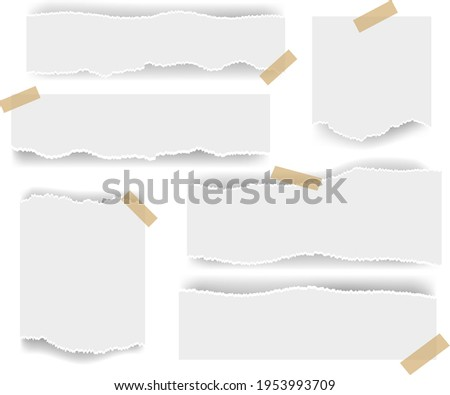 White Ripped paper Isolated White Background With Gradient Mesh, Vector Illustration ストックフォト ©
