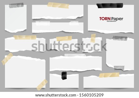 White ripped paper strips collection. Realistic paper scraps with torn edges and adhesive tape. Sticky notes, shreds of notebook pages. Vector illustration. Stock photo ©