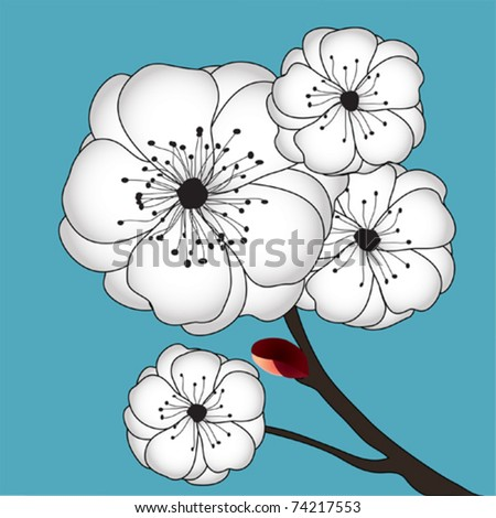 white sakura branch with flowers on a blue background