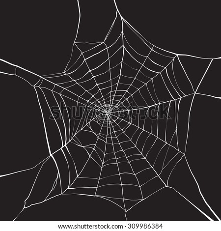 white spider web on dark
