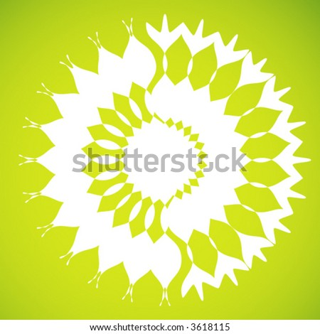 white sunflower  vector