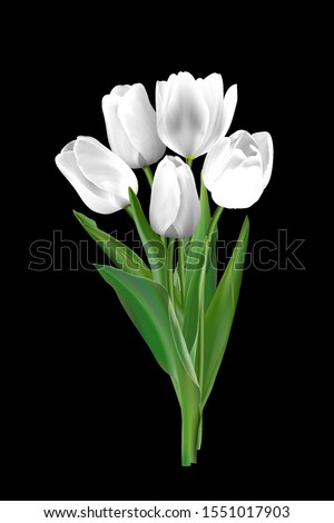 white tulips on a black