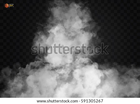 white vector cloudiness  mist
