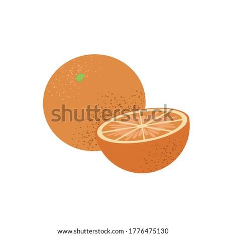 Whole and half vector orange