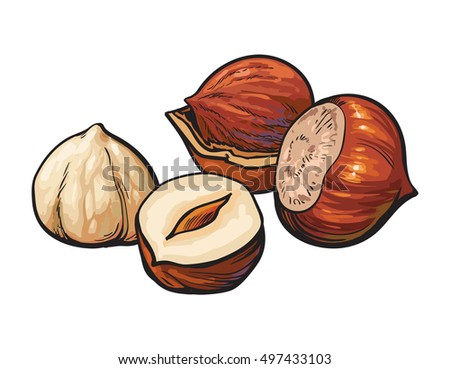 whole and peeled hazelnuts