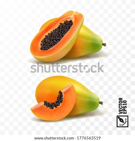 Whole and slices pieces papaya fruit, 3D realistic isolated vector, editable handmade mesh Stockfoto ©