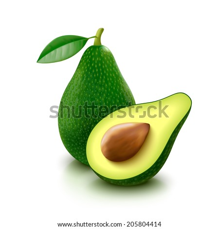 Whole avocado with leaf and half with seed isolated on white background. Vector illustration.