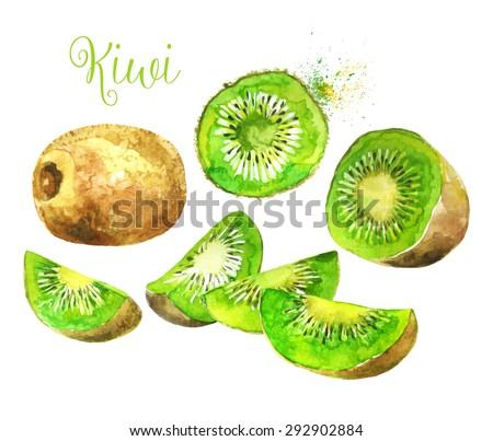 whole kiwi fruit and his sliced