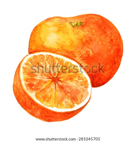 whole orange and half drawing