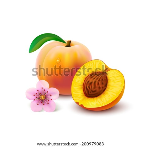 whole peach with leaf  slice