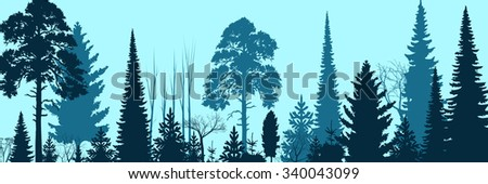 wide forest background
