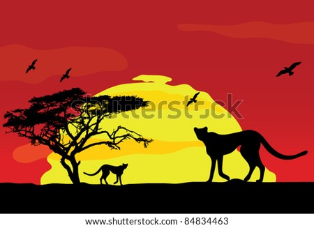 wild african animals at sunset
