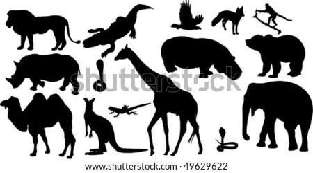 wild animal - vector