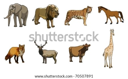 wild animal vector - collection