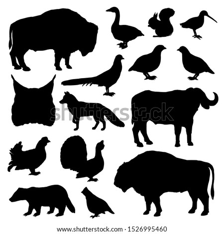 Wild animals and birds monochrome vector silhouettes. Lynx and buffalo, forest fox and bison, woodcock and partridge, squirrel and ox, grouse and goose, duck and badger, fox and pheasant
