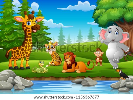 Wild animals are enjoying nature by the river