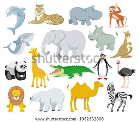 wild animals australia  asia