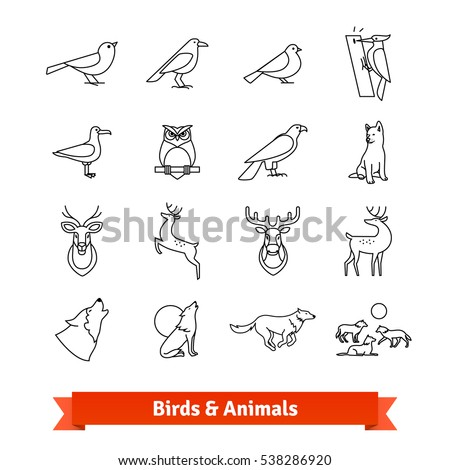 wild animals   birds thin line
