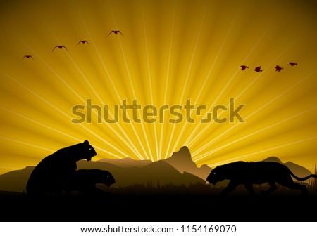 wild animals in a beautiful