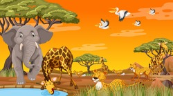 Wild animals in the jungle illustration