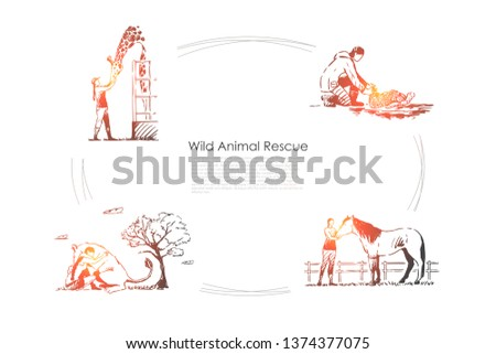 Wild animals rescue - people taking care of giraffe, horse, kangaroo, turtle vector concept set