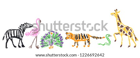 Wild animals set. Crayon like kid`s hand drawn giraffe, tiger, flamingo, snake, peacock, zebra, isolated on white. Child`s drawn stroke colorful pastel chalk or pencil vector art. Doodle funny style