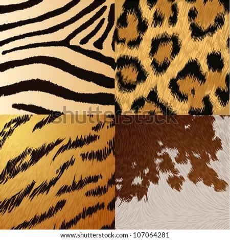 wild animals skin textures