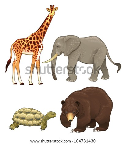 wild animals vector realistic