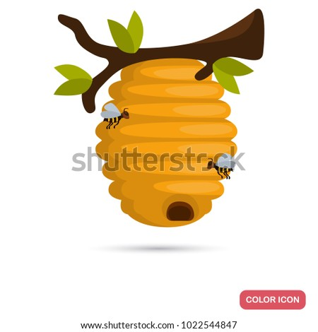 Wild bee hive hang at tree color flat icon