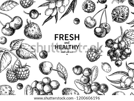 Wild berry drawing. Hand drawn vintage vector frame. Summer fruit set of strawberry, cranberry, currant, cherry, srawberry, blueberry. Detailed organic food template for menu,  jam label, tea banner