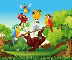 Wild birds and urangutan in the forest illustration