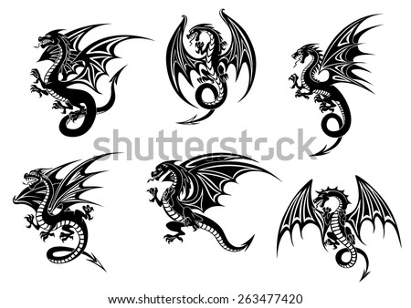 wild black dragons for tattoo