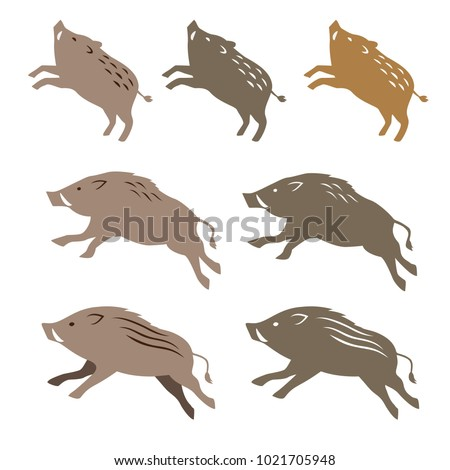 Wild boar wild pig, animal illustrations on white background