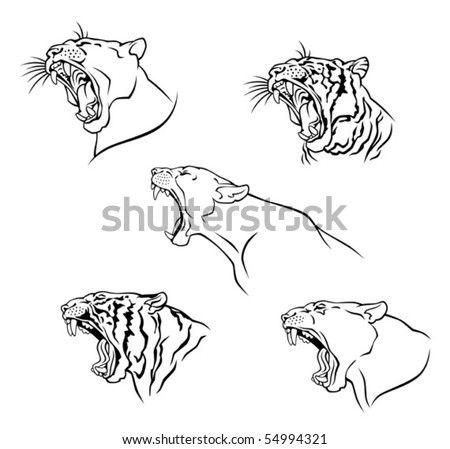 wild cat - stock vector