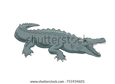 Wild Crocodile Vector Illustration