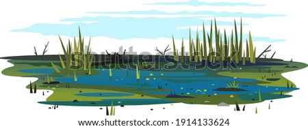 Wild danger swamp with dirty water and various plants isolated illustration, dead trees with bulrush plants, clipart of terrible mystical place, swampy pond with reeds, overgrown pond Foto d'archivio ©