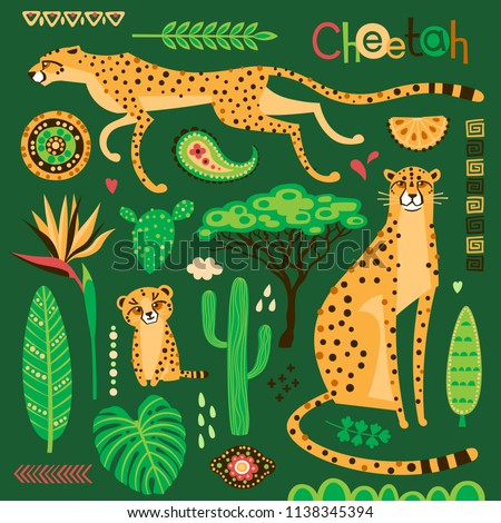 Wild exotic cats, tropical plants and ethnic patterns set. Cheetahs and their cub. Vector illustration of cartoon style.